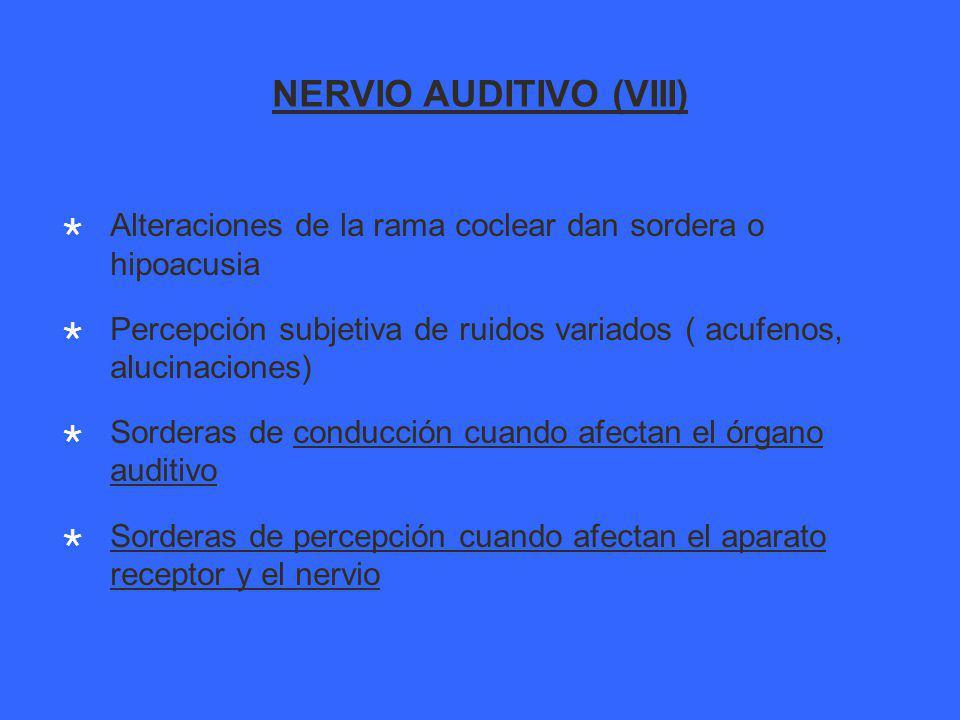 NERVIO AUDITIVO (VIII) Alteraciones de la rama coclear dan sordera o hipoacusia Percepción subjetiva de ruidos variados ( acufenos, alucinaciones) Sorderas de conducción cuando afectan el órgano auditivo Sorderas de percepción cuando afectan el aparato receptor y el nervio