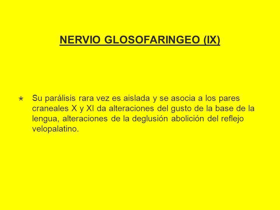 NERVIO GLOSOFARINGEO (IX) Su parálisis rara vez es aislada y se asocia a los pares craneales X y XI da alteraciones del gusto de la base de la lengua, alteraciones de la deglusión abolición del reflejo velopalatino.