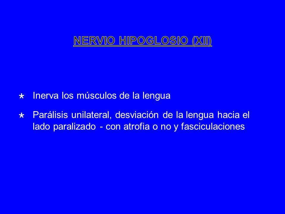 Inerva los músculos de la lengua Parálisis unilateral, desviación de la lengua hacia el lado paralizado - con atrofia o no y fasciculaciones