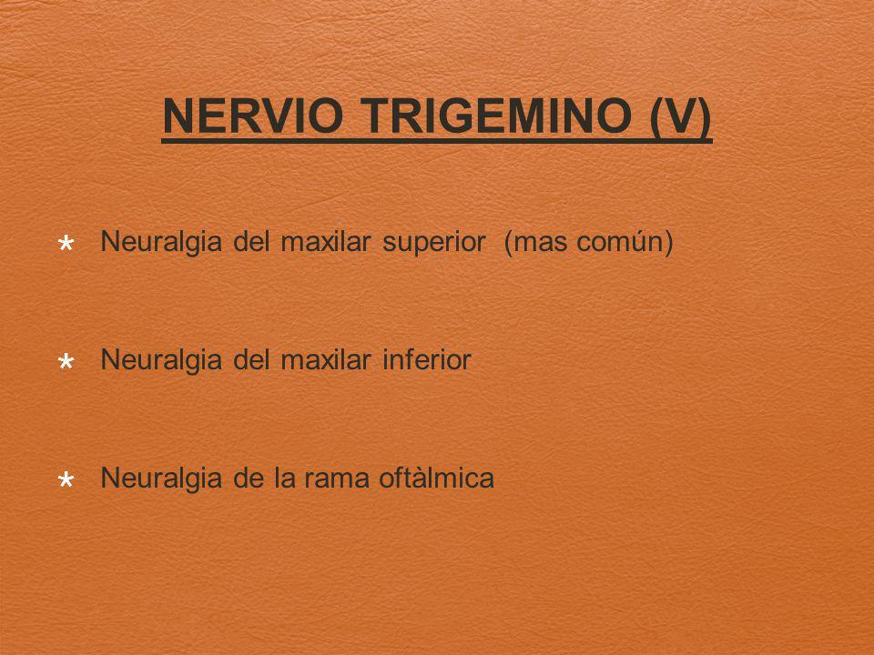 Neuralgia del maxilar superior (mas común) Neuralgia del maxilar inferior Neuralgia de la rama oftàlmica