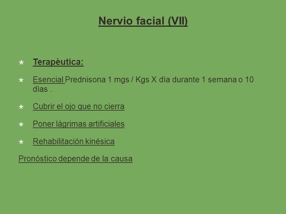 Nervio facial (VII) Terapèutica: Esencial Prednisona 1 mgs / Kgs X dìa durante 1 semana o 10 dìas.