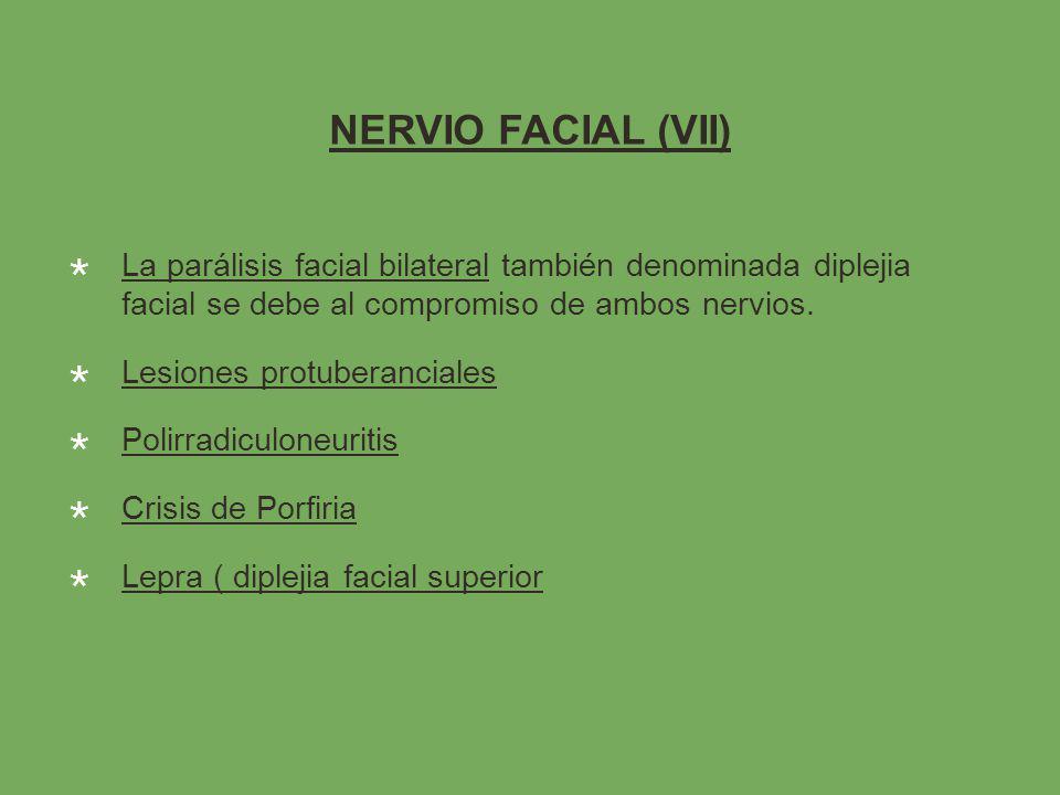 NERVIO FACIAL (VII) La parálisis facial bilateral también denominada diplejia facial se debe al compromiso de ambos nervios.