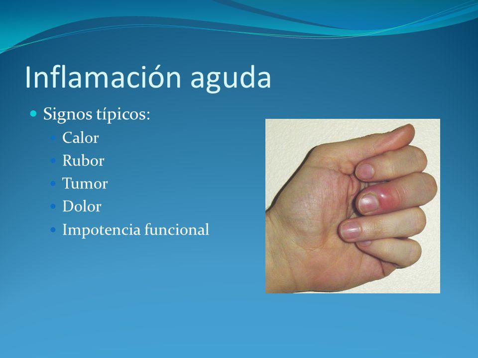 Inflamación aguda Signos típicos: Calor Rubor Tumor Dolor Impotencia funcional