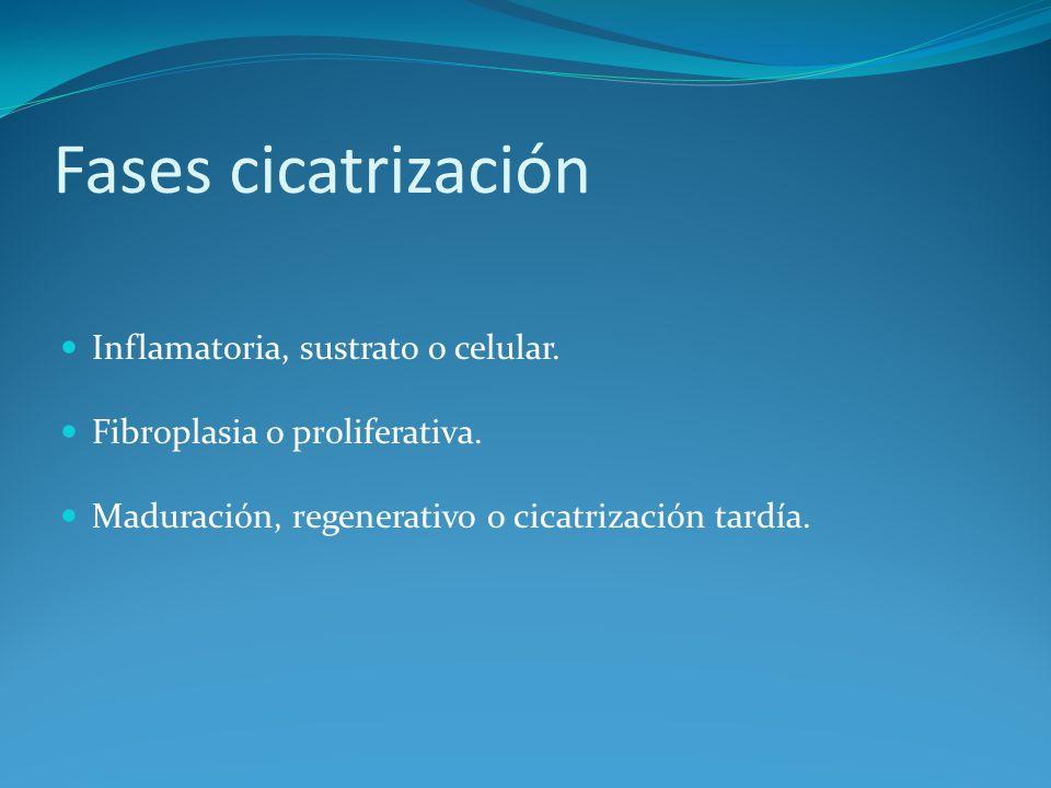 Principios tratamiento heridas Objetivo principal Conseguir la curación de la herida por primera intención.