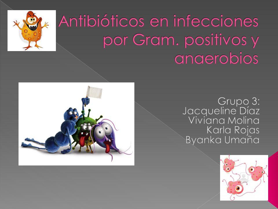 RIESGO/BENEFI CIO Tejidos blandos e infeccione s cutáneas Infeccione s intraabdo minales y pélvicas Abscesos pulmonare s (B.