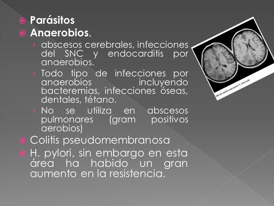 Parásitos Anaerobios, abscesos cerebrales, infecciones del SNC y endocarditis por anaerobios. Todo tipo de infecciones por anaerobios incluyendo bacte