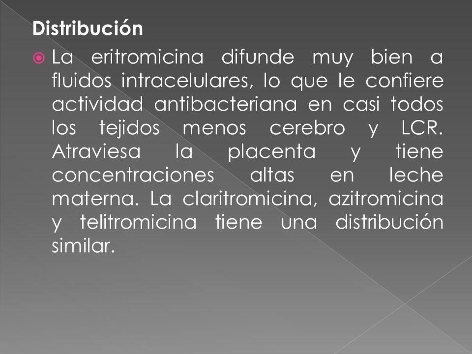 Distribución La eritromicina difunde muy bien a fluidos intracelulares, lo que le confiere actividad antibacteriana en casi todos los tejidos menos ce