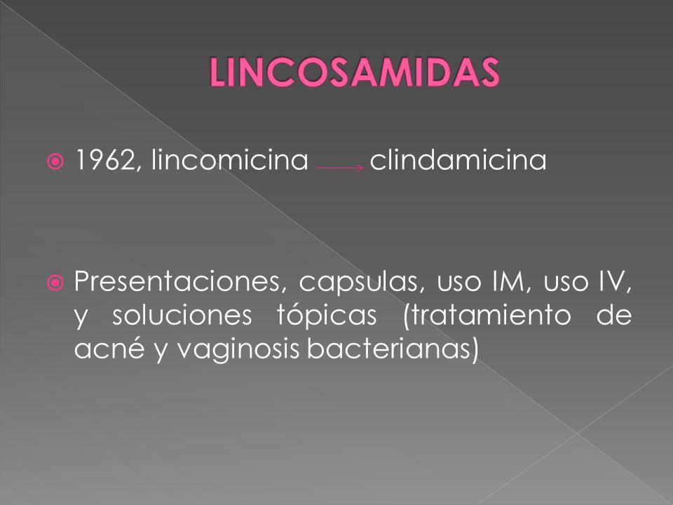 1962, lincomicina clindamicina Presentaciones, capsulas, uso IM, uso IV, y soluciones tópicas (tratamiento de acné y vaginosis bacterianas)