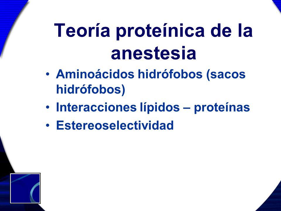 Teoría proteínica de la anestesia Aminoácidos hidrófobos (sacos hidrófobos) Interacciones lípidos – proteínas Estereoselectividad