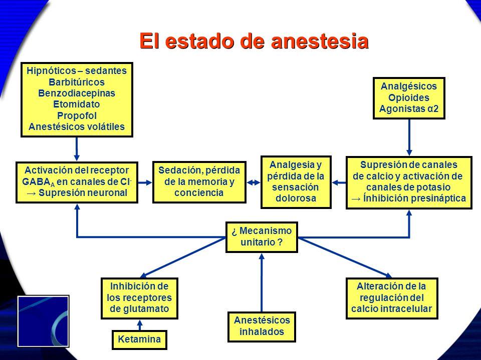 Hipnóticos – sedantes Barbitúricos Benzodiacepinas Etomidato Propofol Anestésicos volátiles El estado de anestesia Analgésicos Opioides Agonistas α2 A