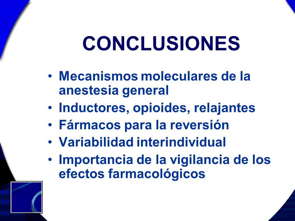 CONCLUSIONES Mecanismos moleculares de la anestesia general Inductores, opioides, relajantes Fármacos para la reversión Variabilidad interindividual I