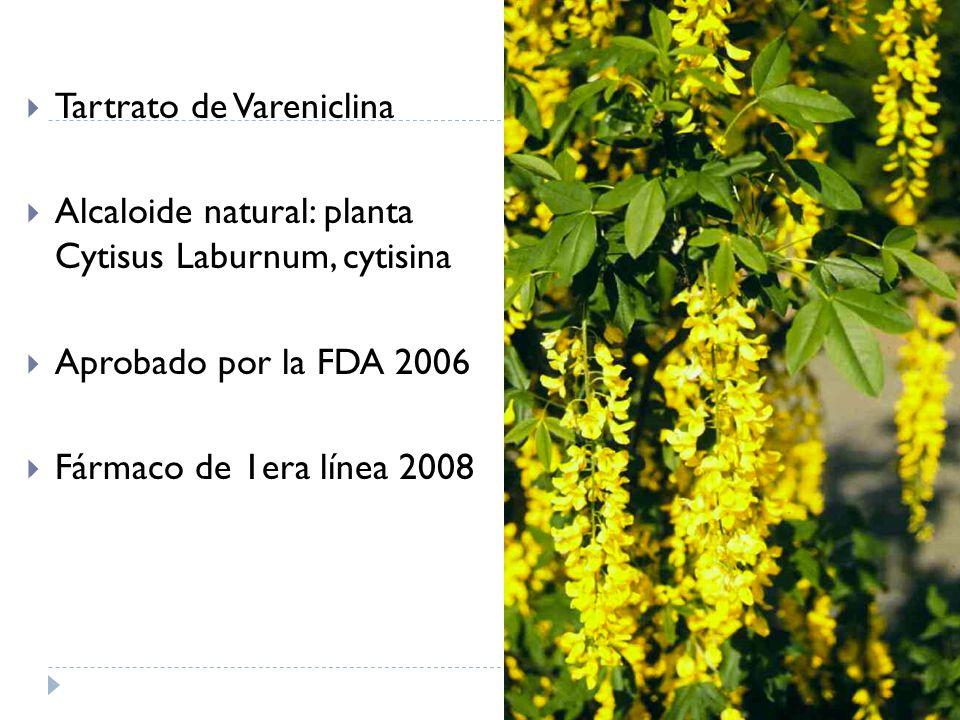 Tartrato de Vareniclina Alcaloide natural: planta Cytisus Laburnum, cytisina Aprobado por la FDA 2006 Fármaco de 1era línea 2008