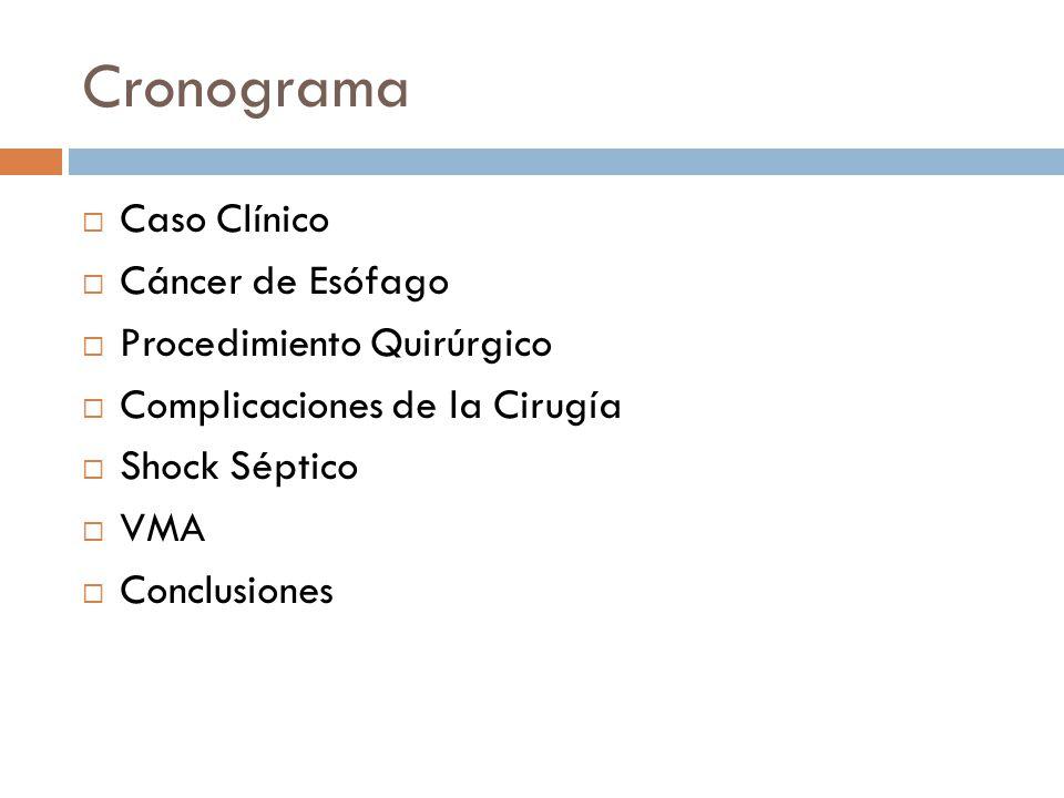 Cronograma Caso Clínico Cáncer de Esófago Procedimiento Quirúrgico Complicaciones de la Cirugía Shock Séptico VMA Conclusiones