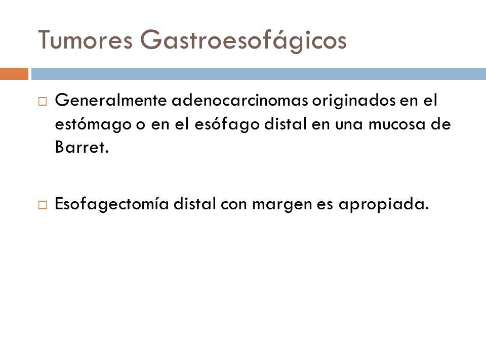 Tumores Gastroesofágicos Generalmente adenocarcinomas originados en el estómago o en el esófago distal en una mucosa de Barret. Esofagectomía distal c