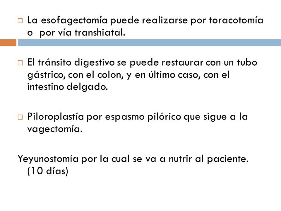 La esofagectomía puede realizarse por toracotomía o por vía transhiatal. El tránsito digestivo se puede restaurar con un tubo gástrico, con el colon,