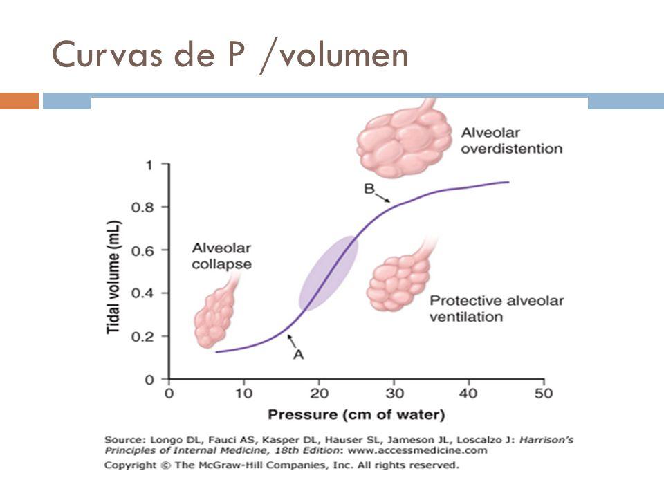 Curvas de P /volumen