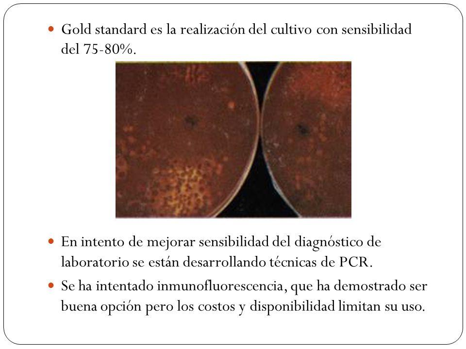 Gold standard es la realización del cultivo con sensibilidad del 75-80%. En intento de mejorar sensibilidad del diagnóstico de laboratorio se están de