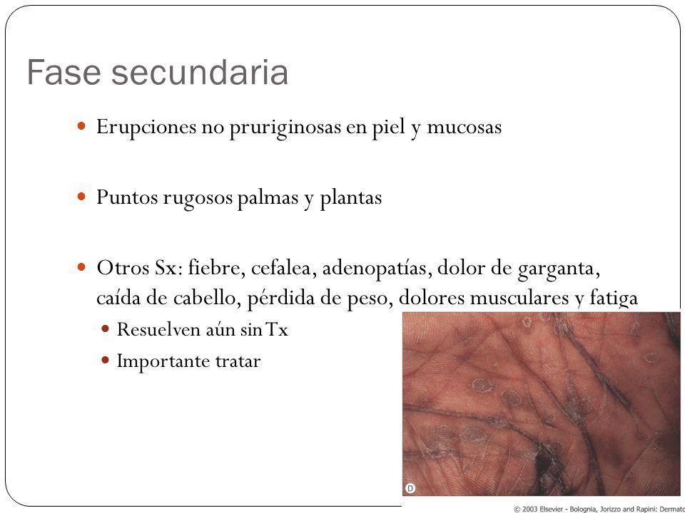 Fase secundaria Erupciones no pruriginosas en piel y mucosas Puntos rugosos palmas y plantas Otros Sx: fiebre, cefalea, adenopatías, dolor de garganta