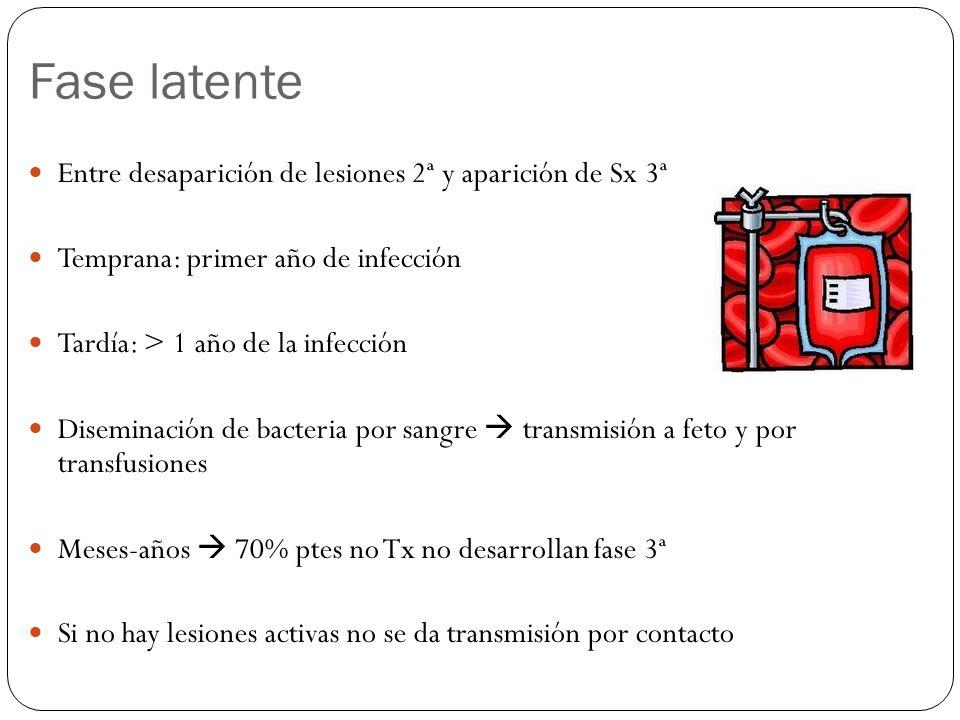 Fase latente Entre desaparición de lesiones 2ª y aparición de Sx 3ª Temprana: primer año de infección Tardía: > 1 año de la infección Diseminación de