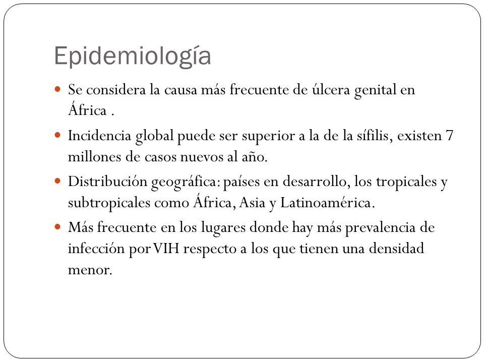 Epidemiología Se considera la causa más frecuente de úlcera genital en África. Incidencia global puede ser superior a la de la sífilis, existen 7 mill