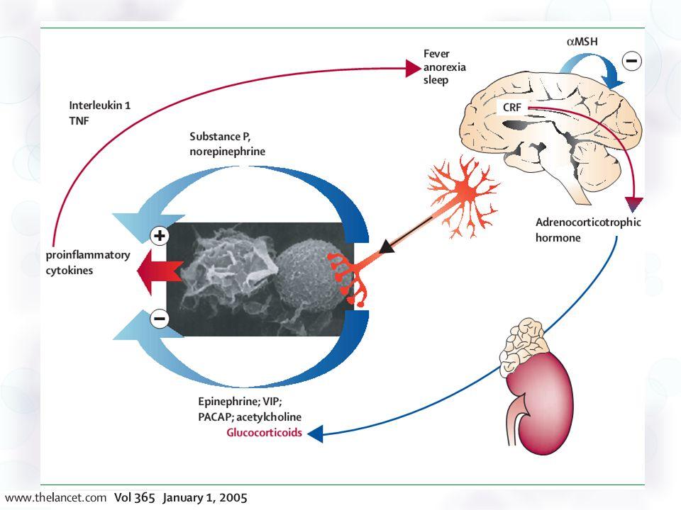 Bajas dosis de esteroides El estudio de Annane (2002) es un estudio multicéntrico, aleatorizado, doble ciego con las siguientes características: 299 casos, clasificados en respondedores y no respondedores a una prueba de estimulación con 250mcg de corticotropina 50mg de hidrocortisona IV cada 6 horas, 50mcg de fludrocortisona VO, y placebo Reversión del shock, mortalidad a 28 días y efectos adversos