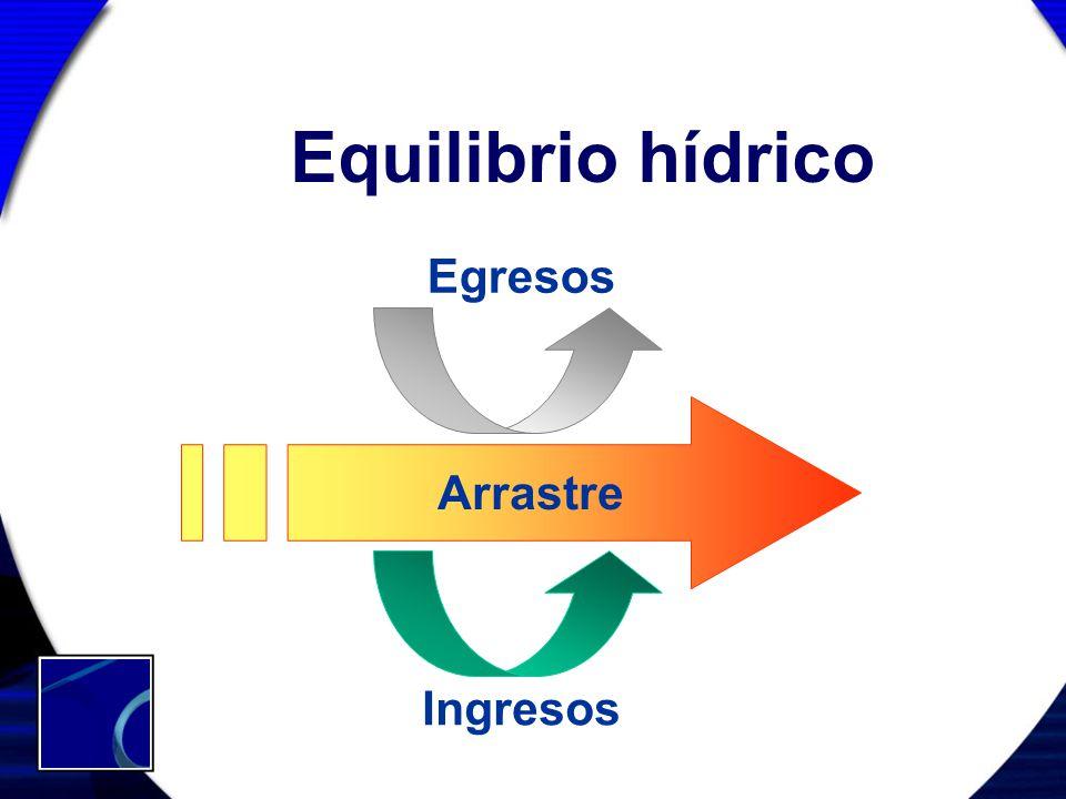 Equilibrio hídrico Arrastre Egresos Ingresos