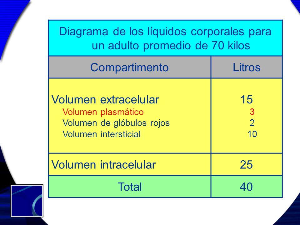 Diagrama de los líquidos corporales para un adulto promedio de 70 kilos CompartimentoLitros Volumen extracelular Volumen plasmático Volumen de glóbulo