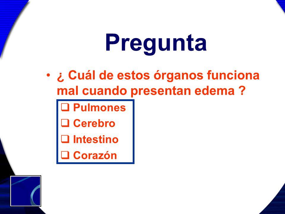 Pregunta ¿ Cuál de estos órganos funciona mal cuando presentan edema ? Pulmones Cerebro Intestino Corazón
