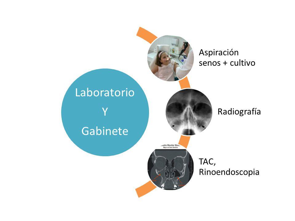 Laboratorio Y Gabinete Aspiración senos + cultivo Radiografía TAC, Rinoendoscopia