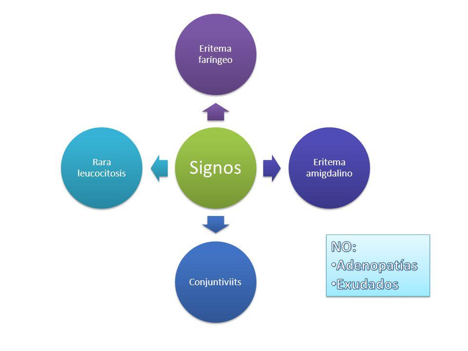 Signos Eritema faríngeo Eritema amigdalino Conjuntiviits Rara leucocitosis