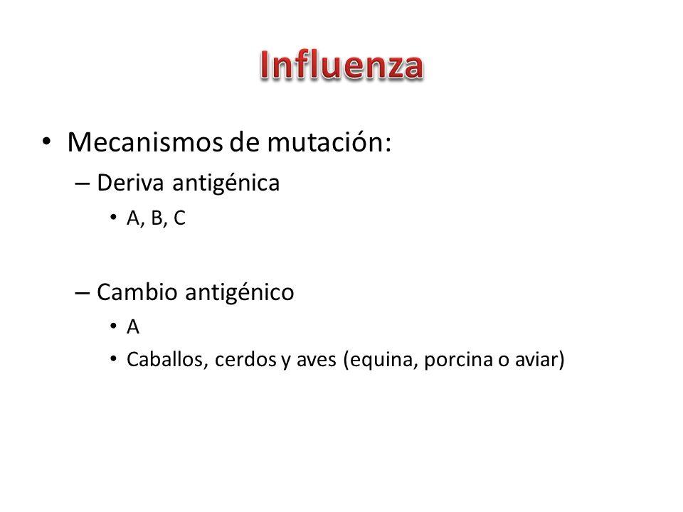 Mecanismos de mutación: – Deriva antigénica A, B, C – Cambio antigénico A Caballos, cerdos y aves (equina, porcina o aviar)