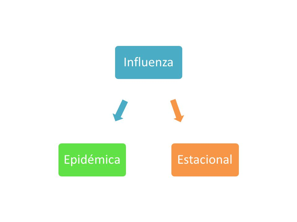 InfluenzaEpidémicaEstacional