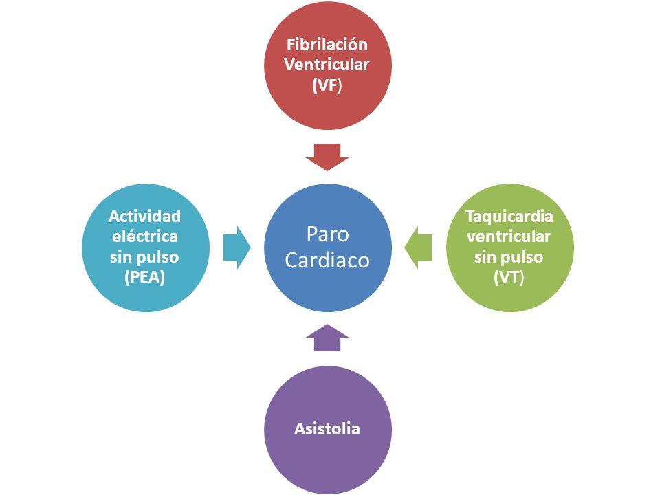 Paro Cardiaco Fibrilación Ventricular (VF ) Taquicardia ventricular sin pulso (VT ) Asistolia Actividad eléctrica sin pulso (PEA)