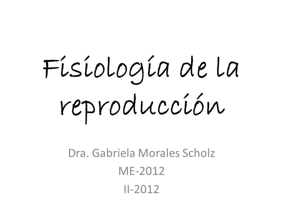 Fisiología de la reproducción Dra. Gabriela Morales Scholz ME-2012 II-2012
