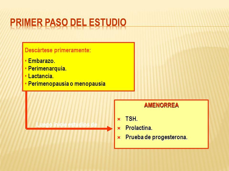 AMENORREA TSH. TSH. Prolactina. Prolactina. Prueba de progesterona. Prueba de progesterona. Descártese primeramente: Embarazo. Perimenarquia. Lactanci