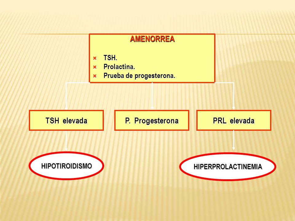 AMENORREA TSH. TSH. Prolactina. Prolactina. Prueba de progesterona. Prueba de progesterona. TSH elevada HIPOTIROIDISMO PRL elevada P. Progesterona HIP