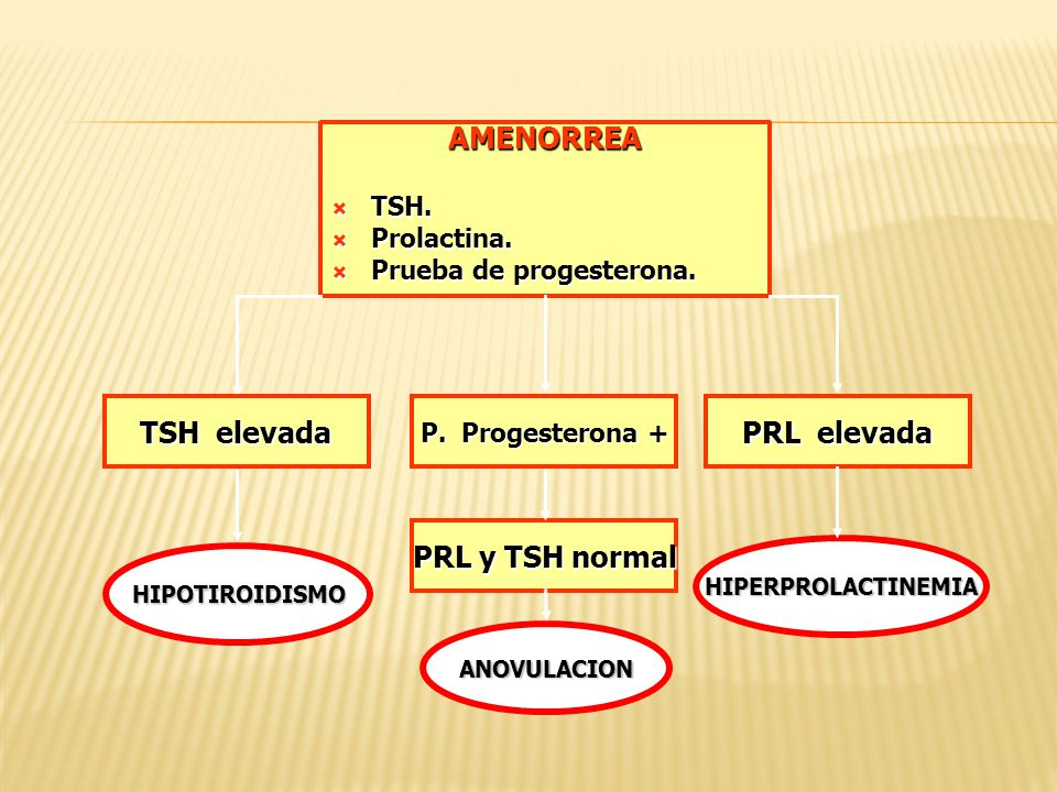 AMENORREA TSH. TSH. Prolactina. Prolactina. Prueba de progesterona. Prueba de progesterona. TSH elevada HIPOTIROIDISMO PRL elevada HIPERPROLACTINEMIA