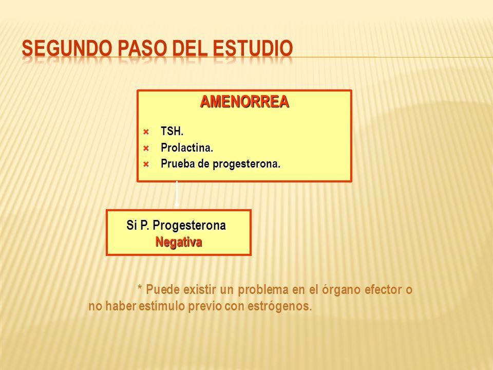 AMENORREA TSH. TSH. Prolactina. Prolactina. Prueba de progesterona. Prueba de progesterona. Si P. Progesterona Negativa * Puede existir un problema en
