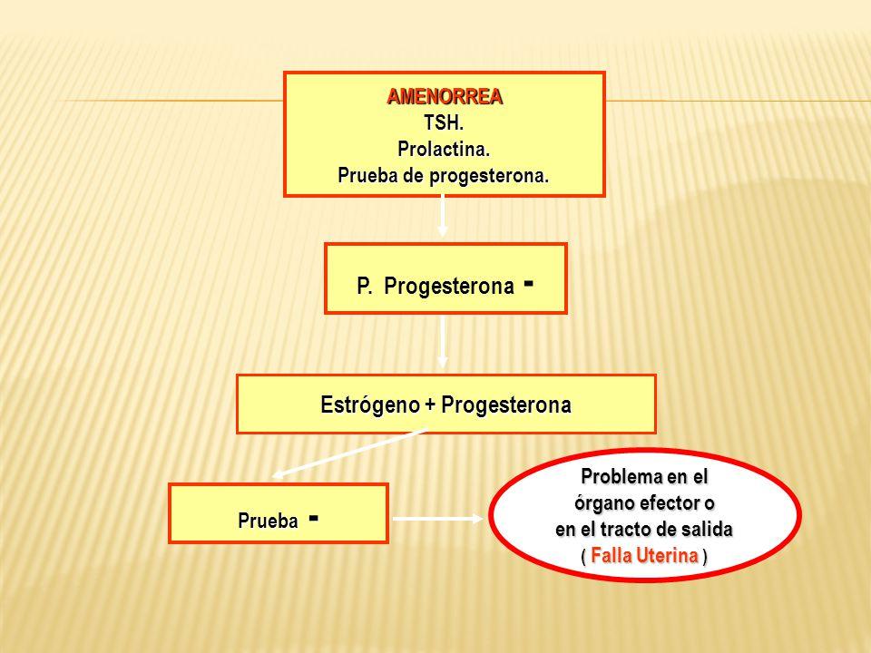 AMENORREATSH.Prolactina. Prueba de progesterona. Estrógeno + Progesterona Prueba - Problema en el órgano efector o en el tracto de salida ( Falla Uter