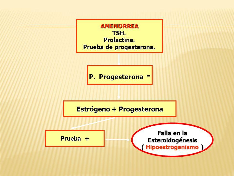 AMENORREATSH.Prolactina. Prueba de progesterona. Estrógeno + Progesterona Prueba + P. Progesterona - Falla en la Esteroidogénesis ( Hipoestrogenismo )