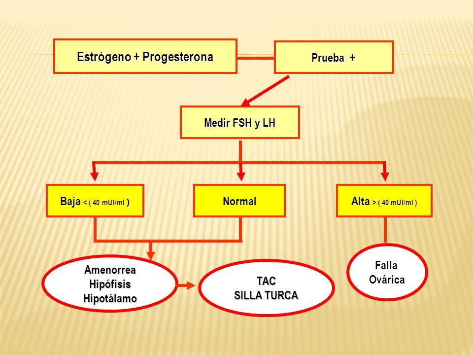 Estrógeno + Progesterona Prueba + Medir FSH y LH Baja < ( 40 mUI/ml ) NormalAlta > ( 40 mUI/ml ) Falla Ovárica TAC SILLA TURCA AmenorreaHipófisisHipot