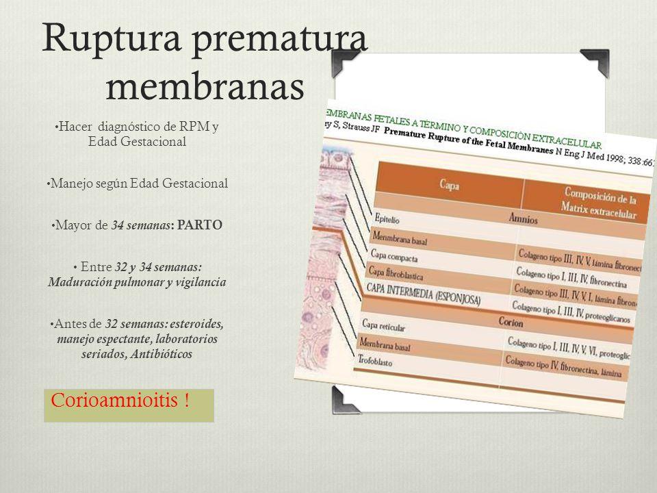 Ruptura prematura membranas Hacer diagnóstico de RPM y Edad Gestacional Manejo según Edad Gestacional Mayor de 34 semanas : PARTO Entre 32 y 34 semana