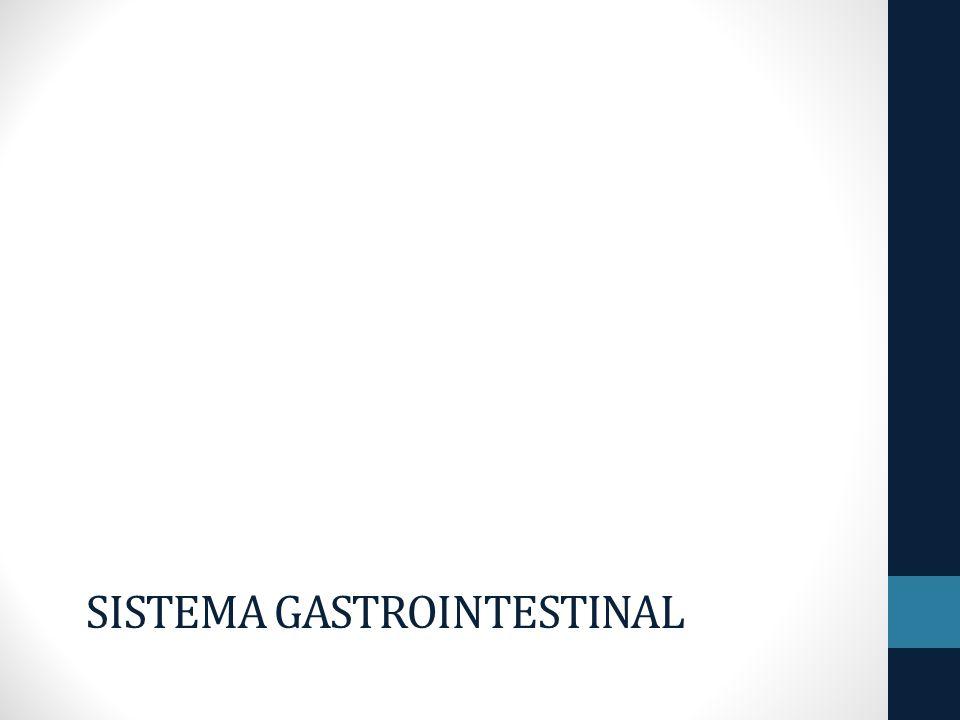SISTEMA GASTROINTESTINAL