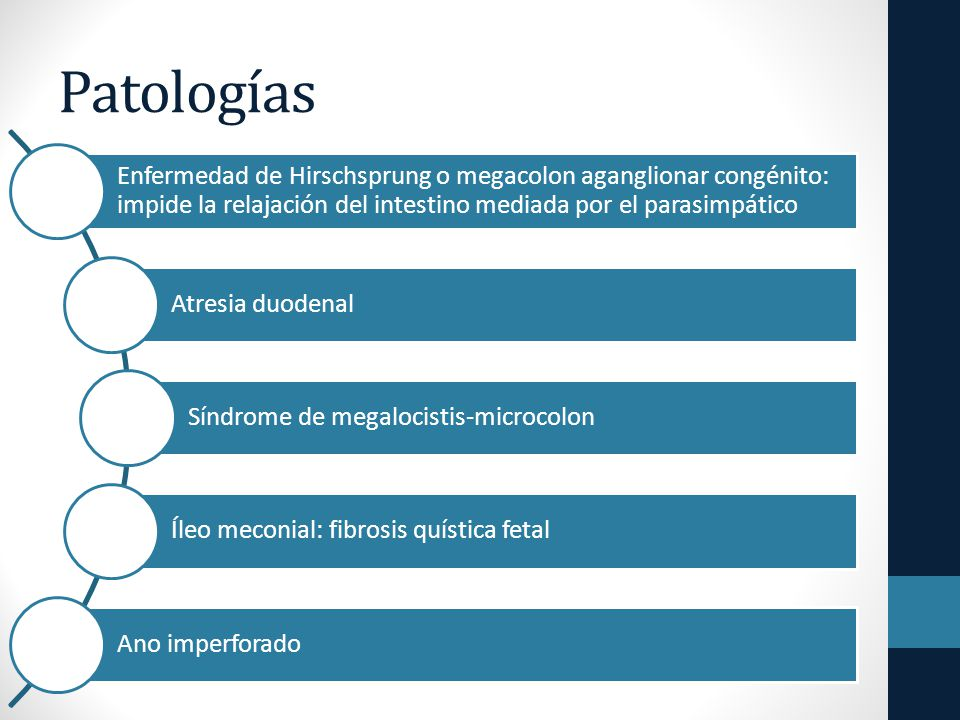 Patologías Enfermedad de Hirschsprung o megacolon aganglionar congénito: impide la relajación del intestino mediada por el parasimpático Atresia duodenal Síndrome de megalocistis-microcolon Íleo meconial: fibrosis quística fetal Ano imperforado