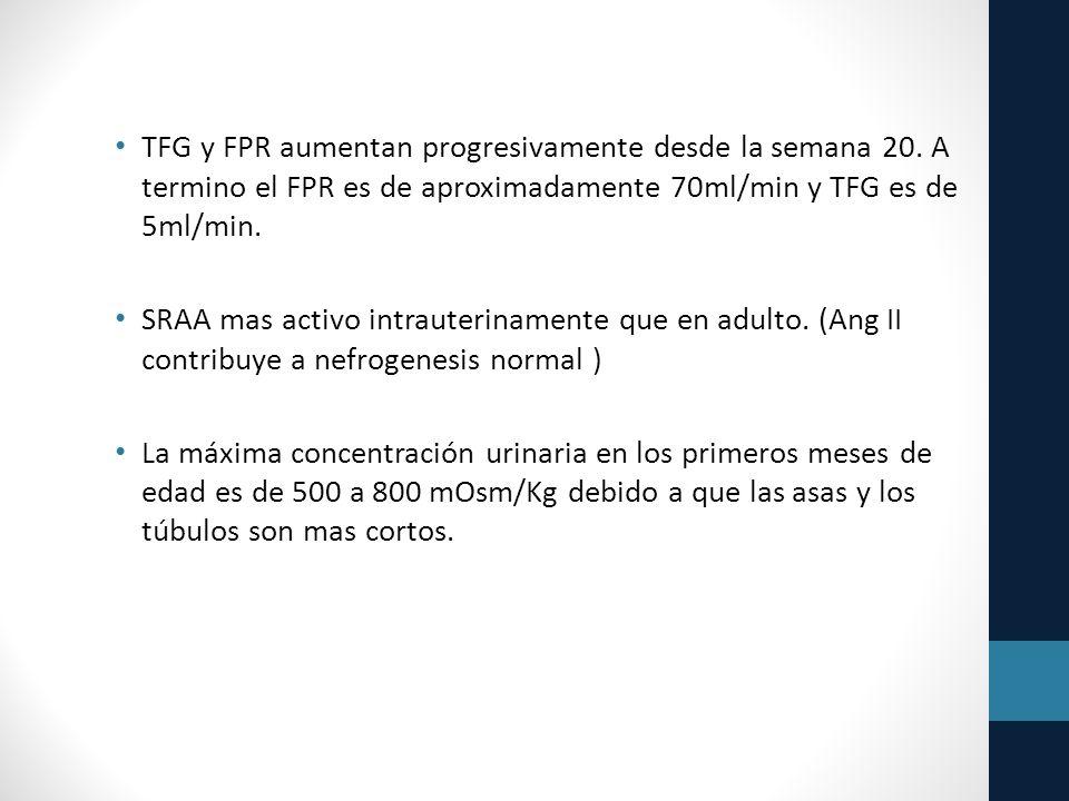 TFG y FPR aumentan progresivamente desde la semana 20.