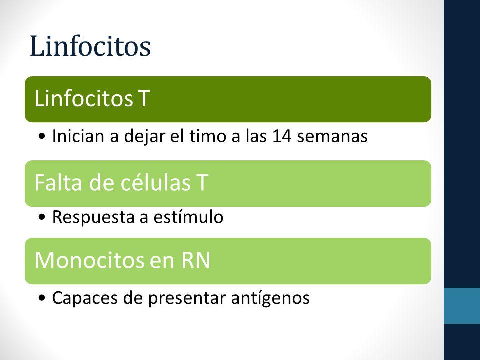 Linfocitos Linfocitos T Inician a dejar el timo a las 14 semanas Falta de células T Respuesta a estímulo Monocitos en RN Capaces de presentar antígenos