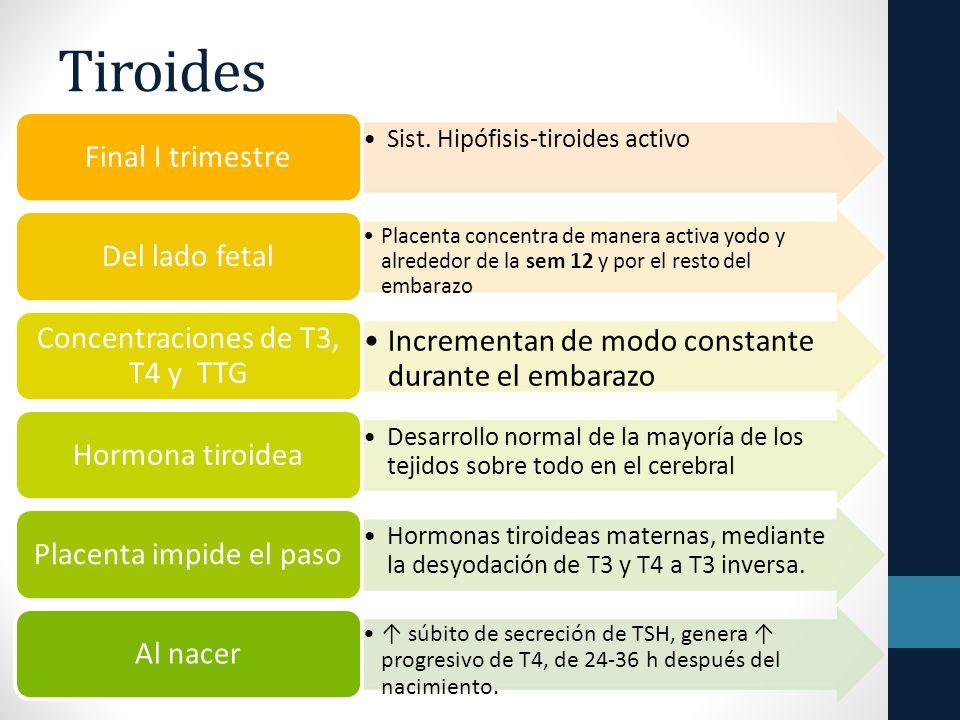 Tiroides Sist.