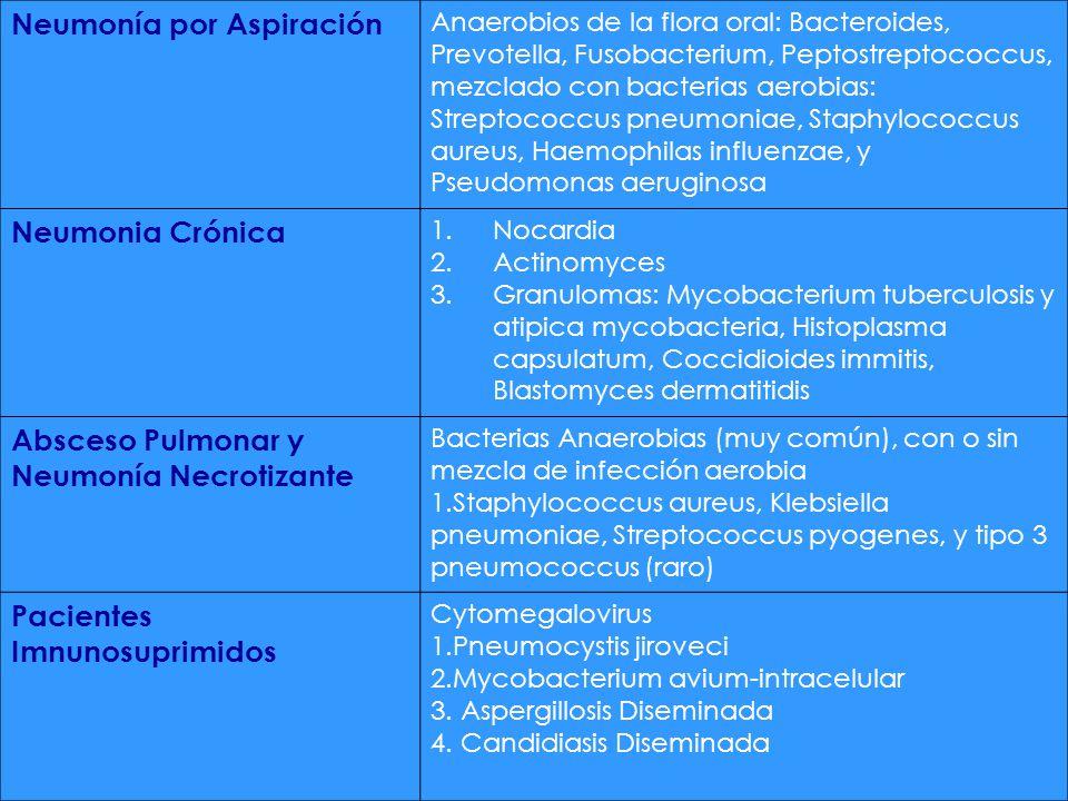 Neumonía por Aspiración Anaerobios de la flora oral: Bacteroides, Prevotella, Fusobacterium, Peptostreptococcus, mezclado con bacterias aerobias: Stre