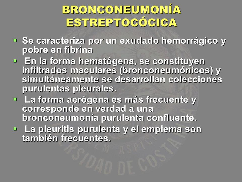 BRONCONEUMONÍA ESTREPTOCÓCICA Se caracteriza por un exudado hemorrágico y pobre en fibrina Se caracteriza por un exudado hemorrágico y pobre en fibrin