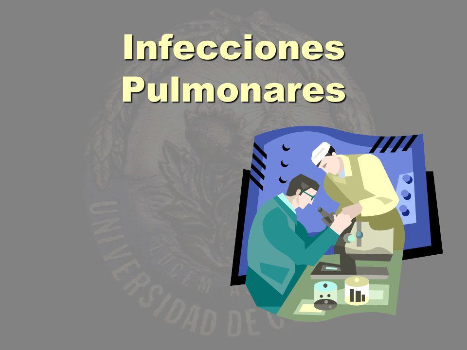 BRONCONEUMONÍA ESTAFILOCÓCICA Corresponde al 5% de las neumonías bacterianas.